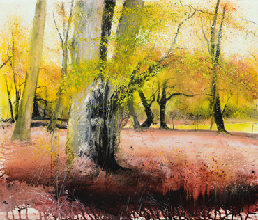 Thumbnail image of Autumn Gold, New Forest, II by Philip Dawson