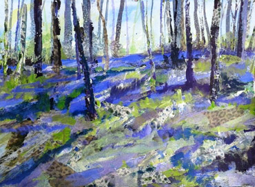 Thumbnail image of Burleigh Bluebell Woods by Rita Sadler