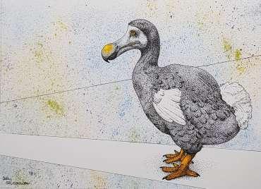 Thumbnail image of Dodo by Sally Struszkowski