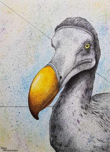 Portrait of a Dodo by Sally Struszkowski