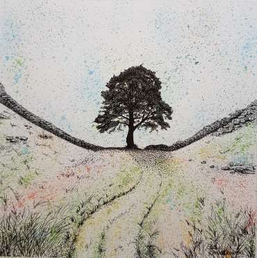 Thumbnail image of Sycamore Gap by Sally Struszkowski