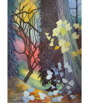 Thumbnail image of Forest Lights by Shirley Easton