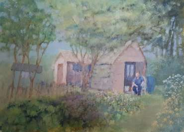 Allotments, 3 by Terry Whittaker