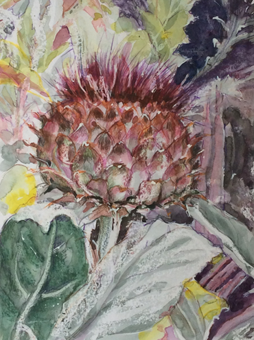 Thumbnail image of Cardoon 2 by Toni Northcott