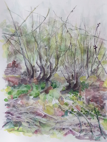 Thumbnail image of Overgrown Fishponds by Toni Northcott